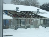 greenhouse snow 001.JPG